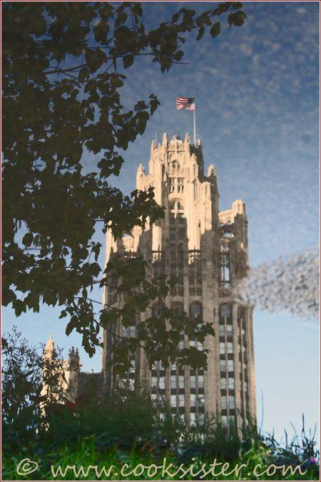 chicago tribune building stones. Tribune Tower, Chicago